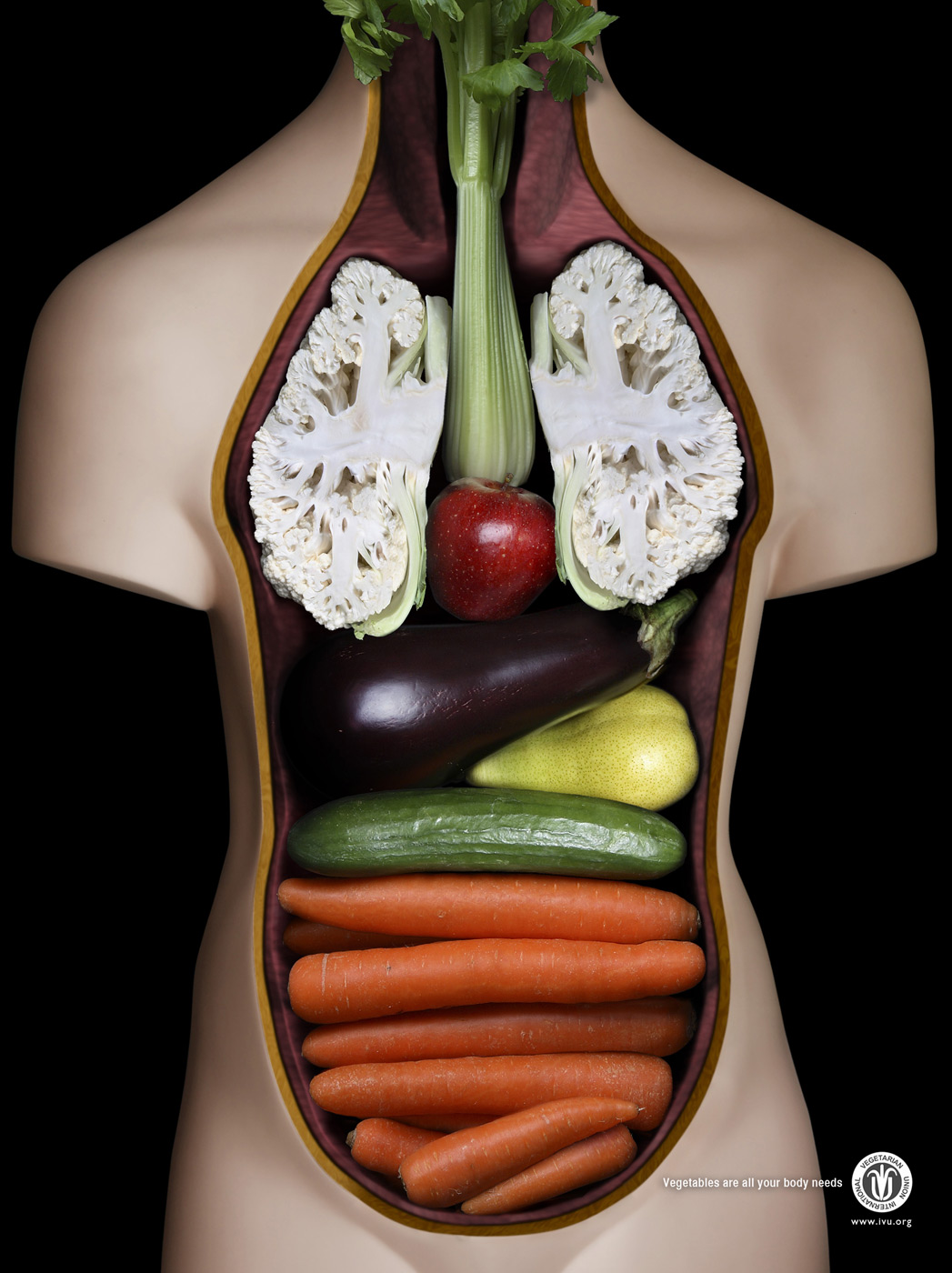 InternationalVegetarianUnion-JWT-Kuwait